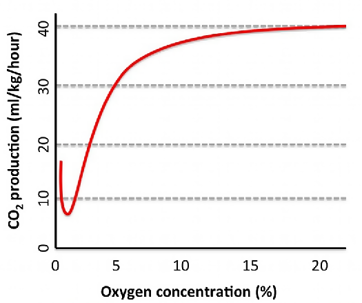 oxygen concentrations and plant respiration